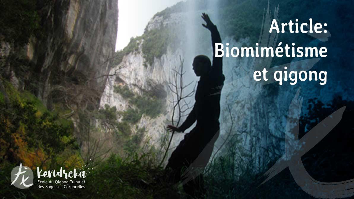 Article biomimétisme en médecine Chinoise