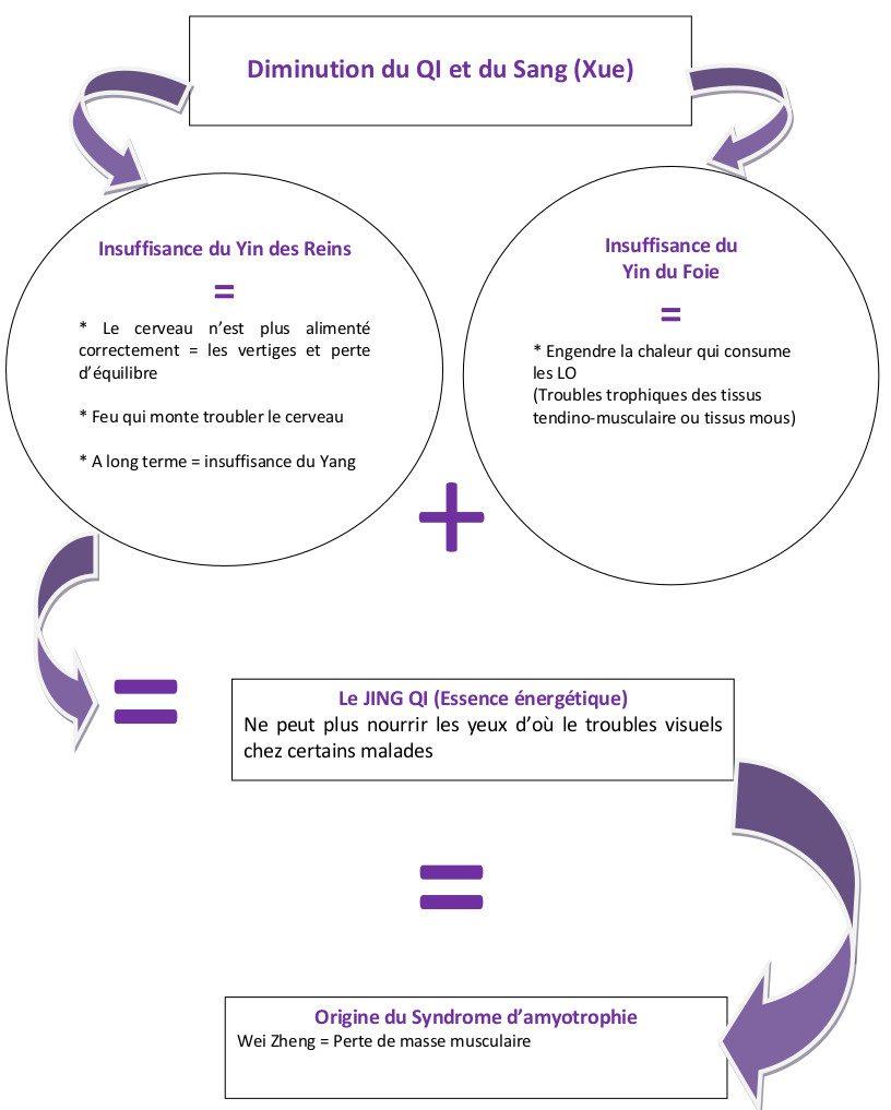 Diminution du QI et du SAns (Xue) et la sclerose